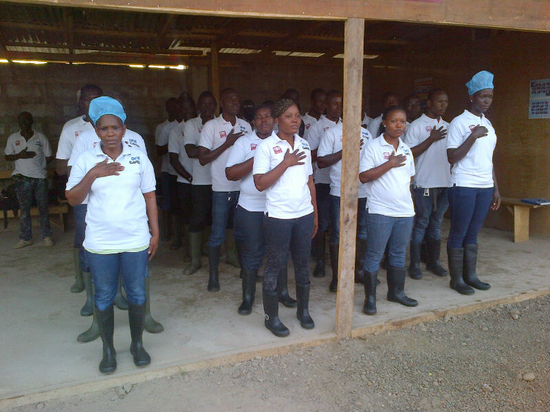 Burial team2