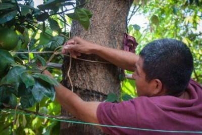 CAFOD partner Fidel at work in Puentecitos, El Salvador