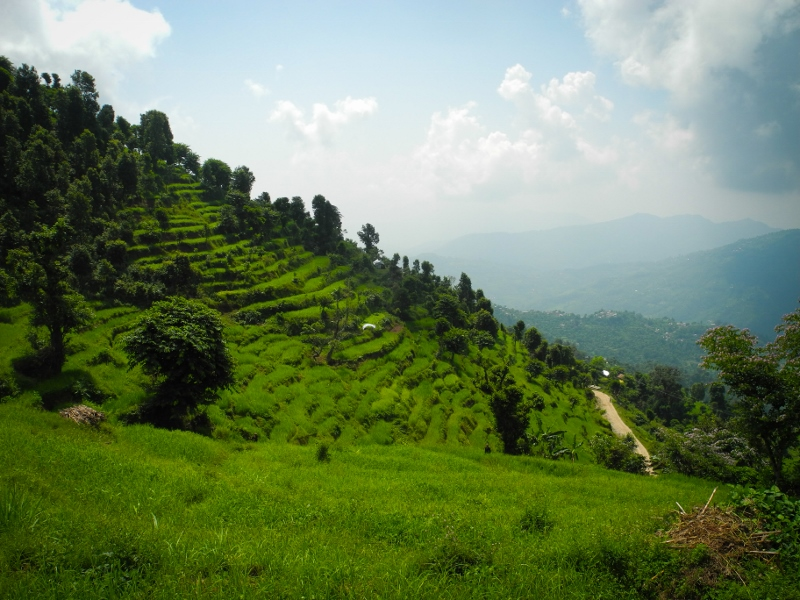 Lush green hillsides in Gorkha district