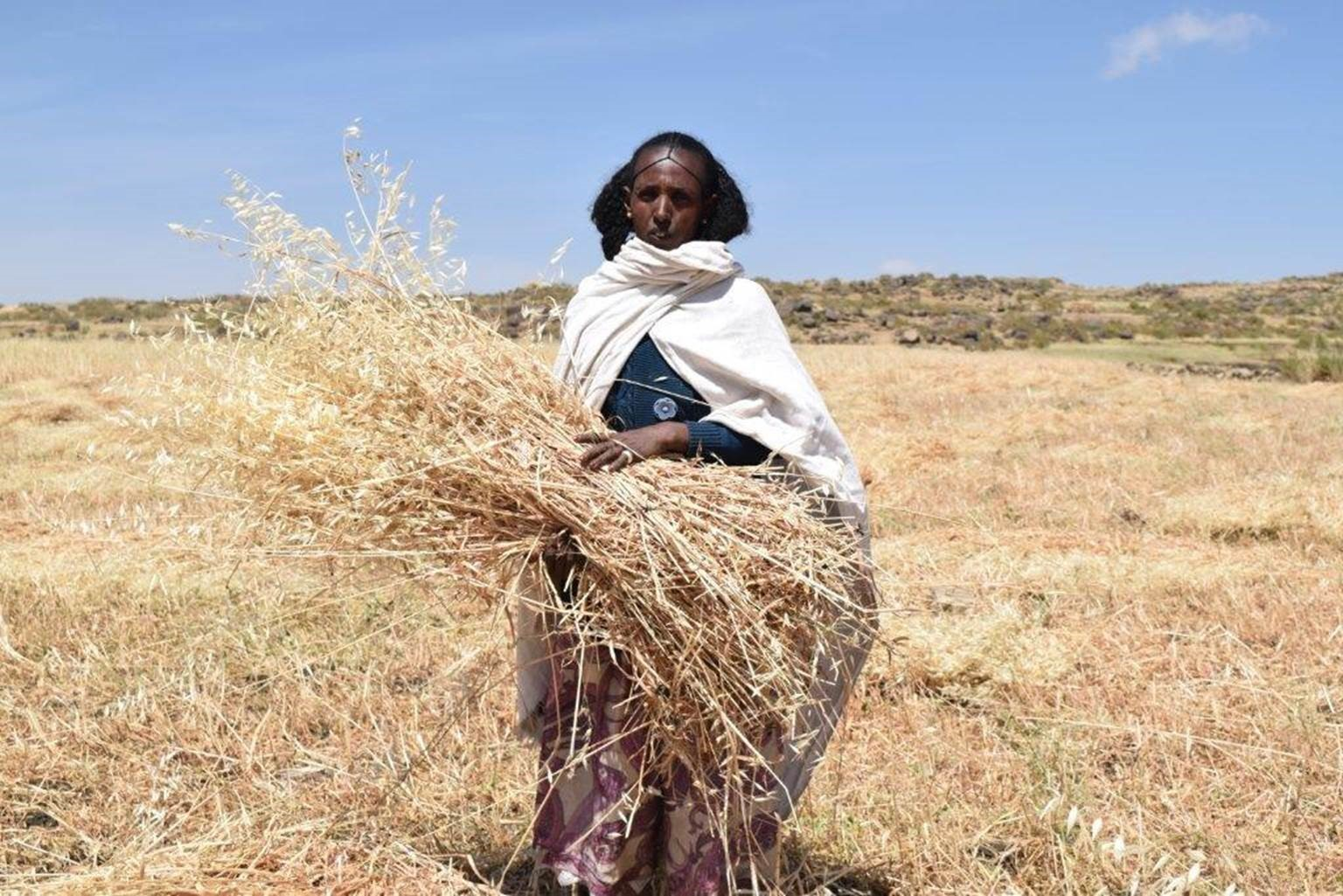 Herit in Ethiopia with her harvest