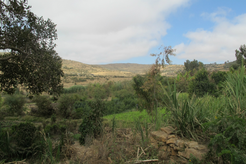 The view of Lemlem.