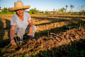 A livelihoods project in the Philippines