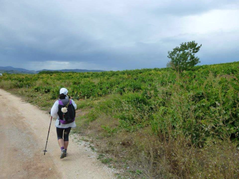 CAFOD volunteer Cristina found her inner strength while walking the Camino route.