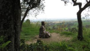 Statue of St Francis sitting looking out at creation near San Damiano, Assisi