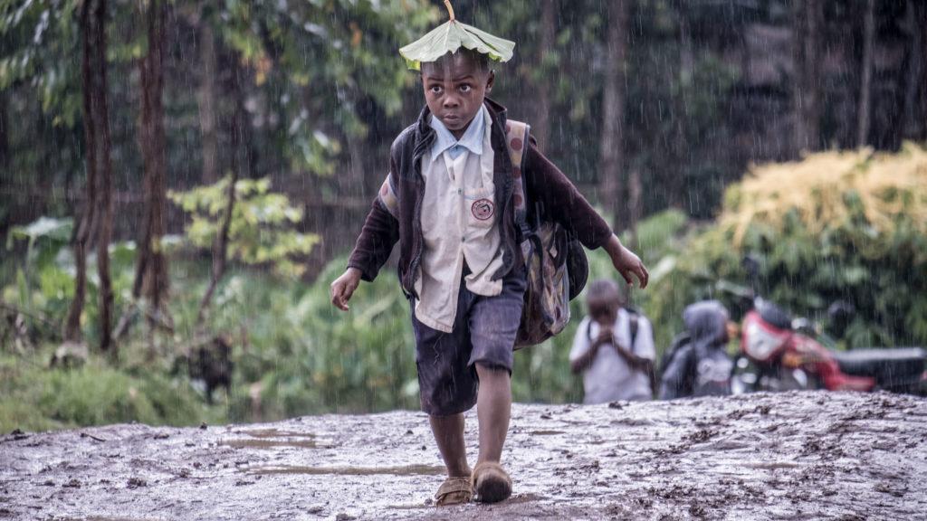 Children use leaves as umbrellas